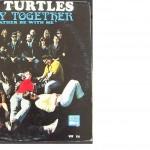 12-8 turtles